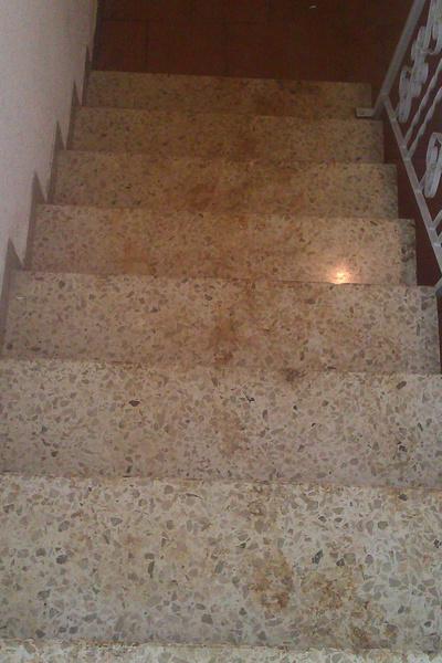 Terrazzo Boden reinigen