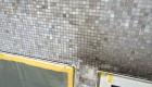 Fassadenreinigung6